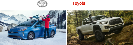 Royal South Toyota